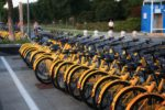 Many yellow bikes standing in a line